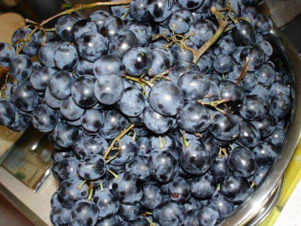 Вино на мезге из яблочного и виноградного жмыха пошаговое приготовление