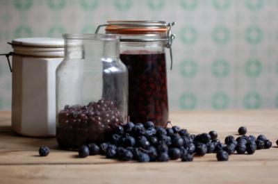 Тройка лучших рецептов домашней наливки из терна