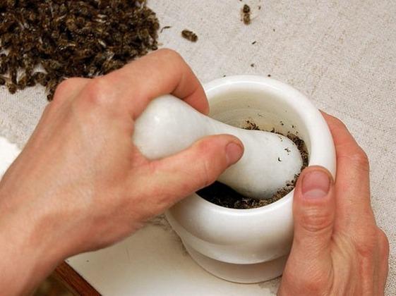 Приготовление настойки из пчелиного подмора
