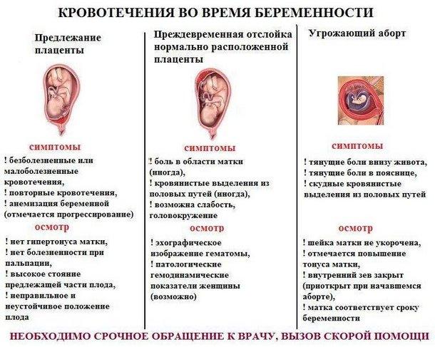 Кровотечения во время беременности