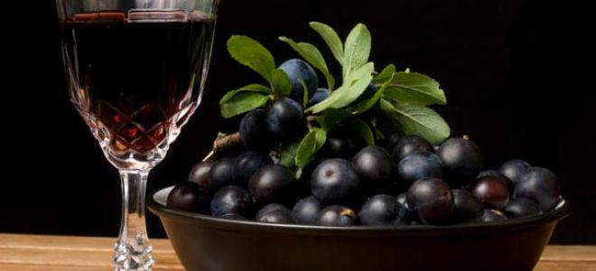 Вино из терна в домашних условиях