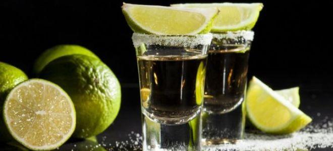Как правильно пить текилу правильно