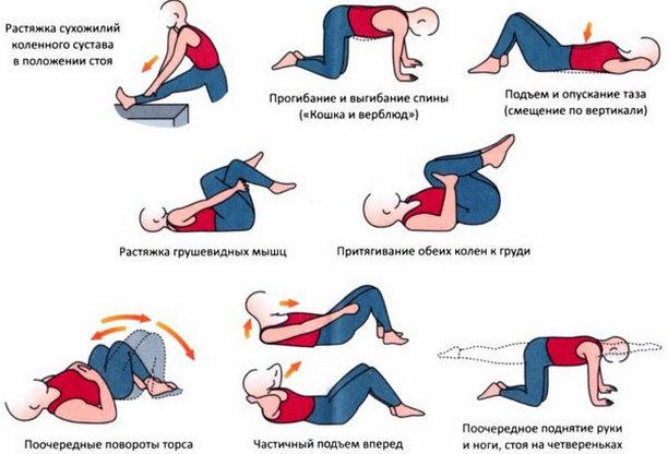 Лечебная физкультура при болях в пояснице
