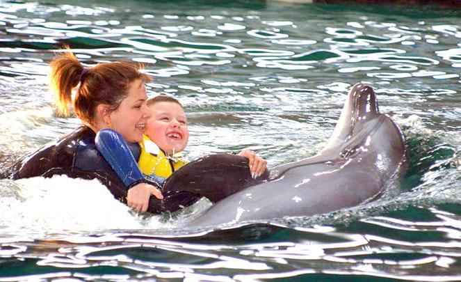 Дельфинотерапия детей с ДЦП