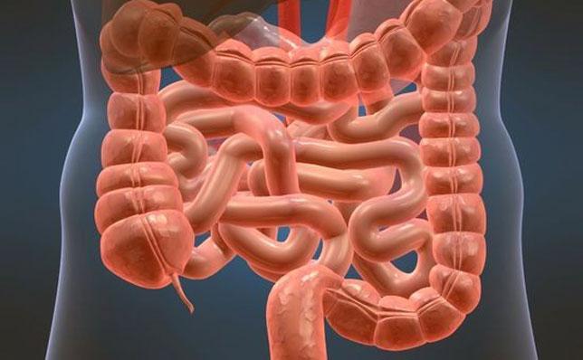 Патология со стороны кишечника