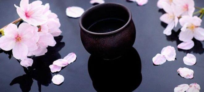 Научим,как пить саке правильно