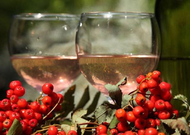 Домашнее вино из красной и черноплодной рябины. Лучшие рецепты приготовления