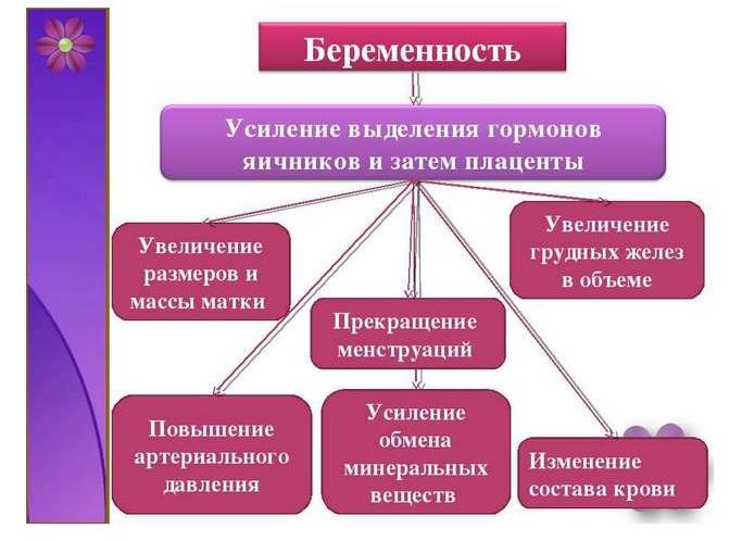 Гормональные изменения в организме