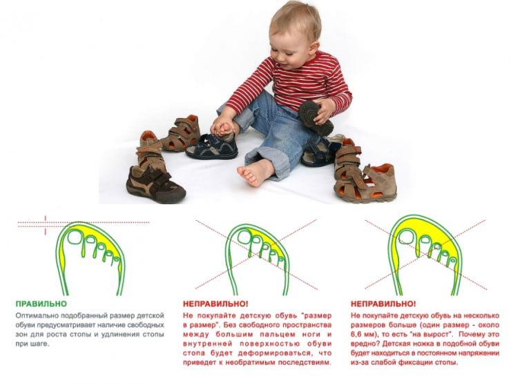 Длина ступни ребенка по месяцам
