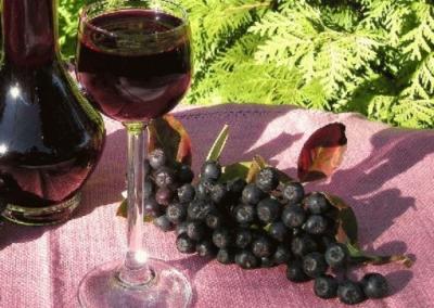 Лучшие рецепты приготовления наливки из черноплодной рябины