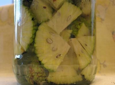 Приготовление и применение настойки из маклюры. Что лечит средство из адамова яблока?