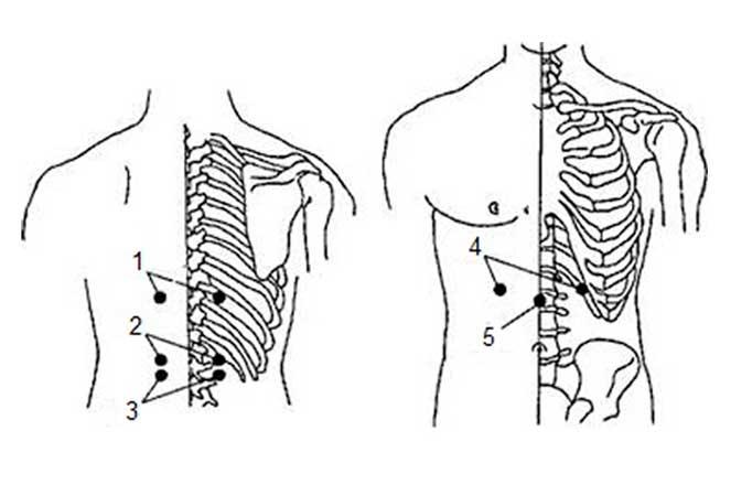 Точки для массажа гастрита с повышенной кислотности