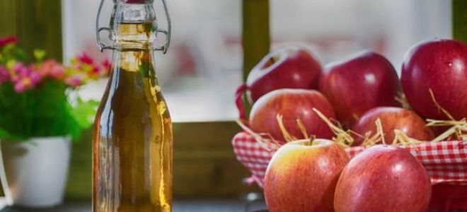 Классические пошаговые рецепты яблочного уксуса в домашних условиях