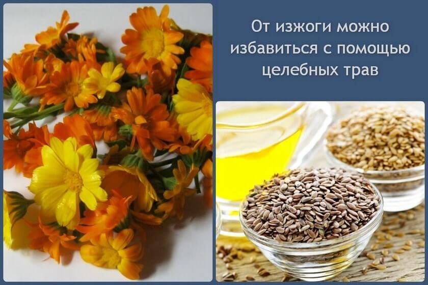 travy_ot_izzhogi