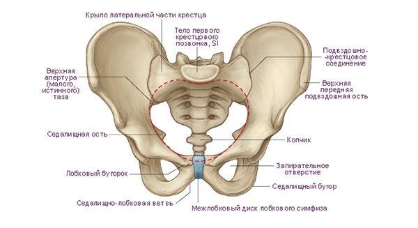 Лечение и последствия переломов тазовых костей