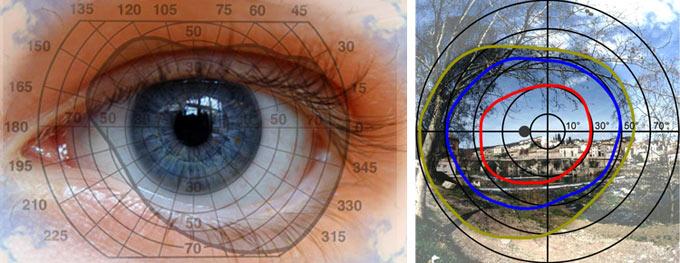 как развить периферическое зрение