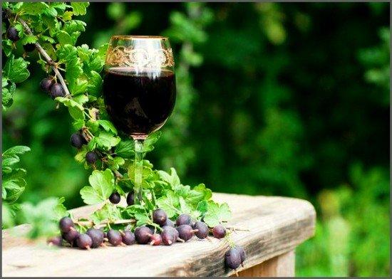 Вино из крыжовника в домашних условиях простые рецепты