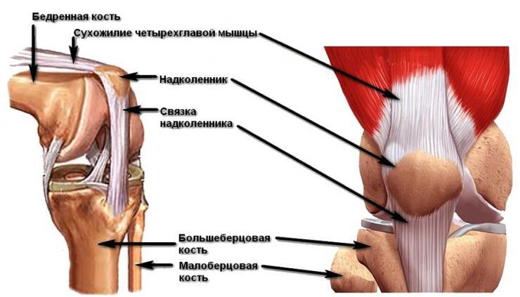 Травмы нижних конечностей: классификация и методы лечения