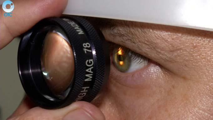 обследуют глазное дно