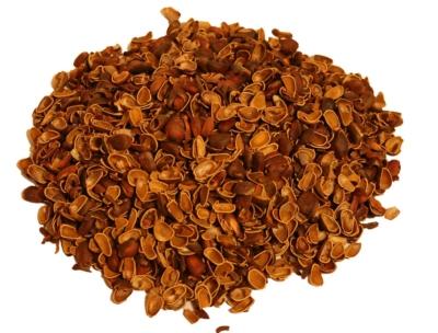 Польза и вред кедровой настойки на водке из орешек, шишек и скорлупки. Лучшие рецепты народной медицины
