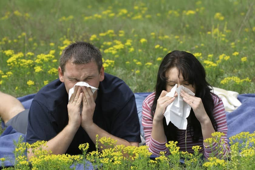 prichiny-simptomy-i-lechenie-allergii