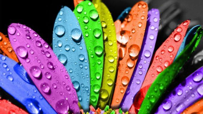 нарушение цветовосприятия