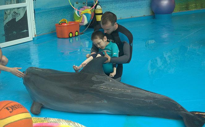 Дельфинотерапия для детей с ДЦП