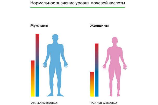 Нормальное значение уровня мочевой кислоты